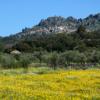 ポルトガルの聖なる山、その名もモンサント