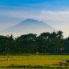 アグン山の噴火は一旦終了。バリ島らしい田園風景を歩いてランチしてきた