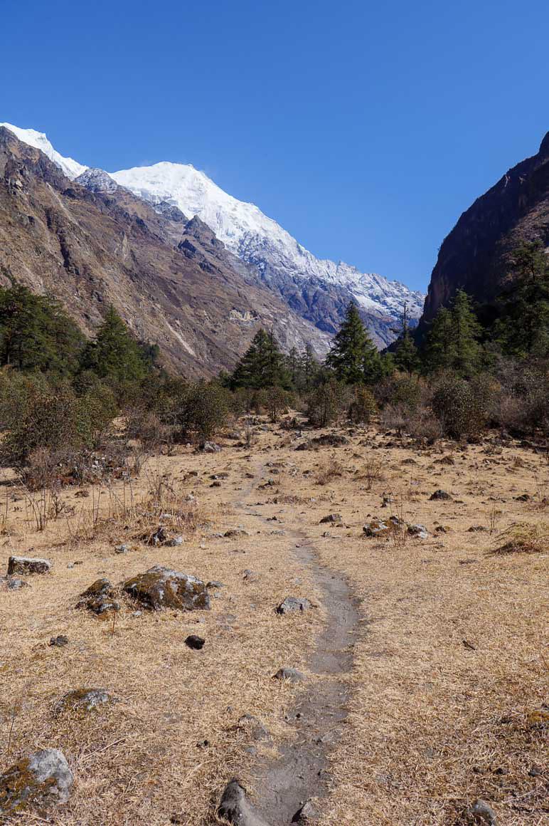 ランタン渓谷への道