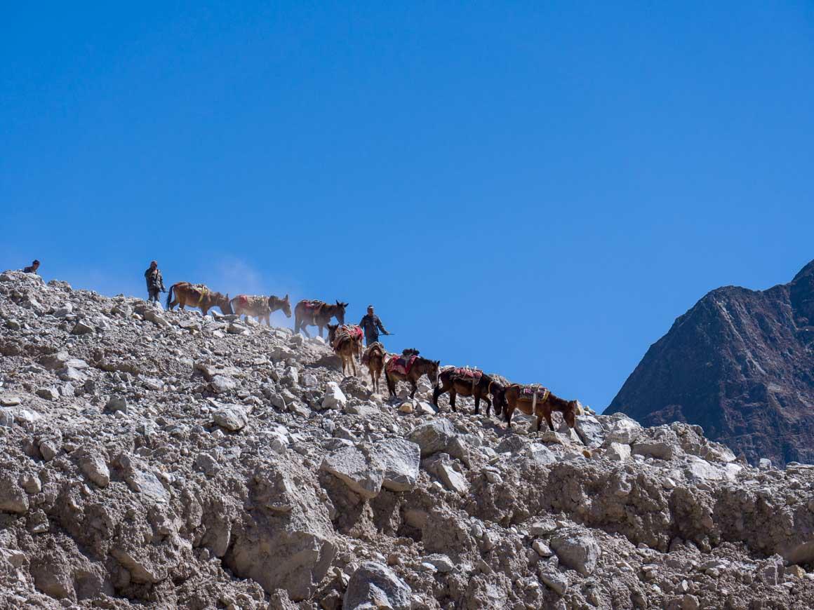 ランタン村をキャラバンが通る