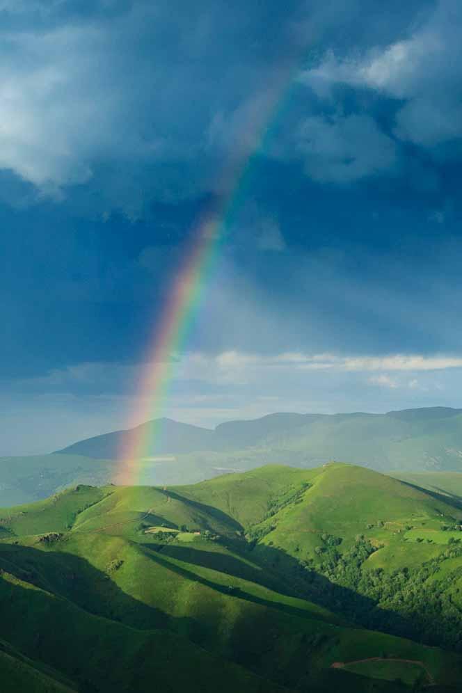 虹色のオーブは、虹と同じ物理的原因で発生する