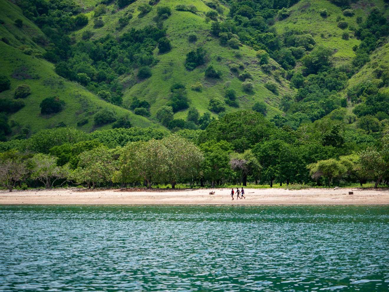 コモド島の海岸