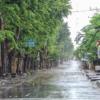 バリ島が静寂につつまれる神聖な1日【ニュピ】