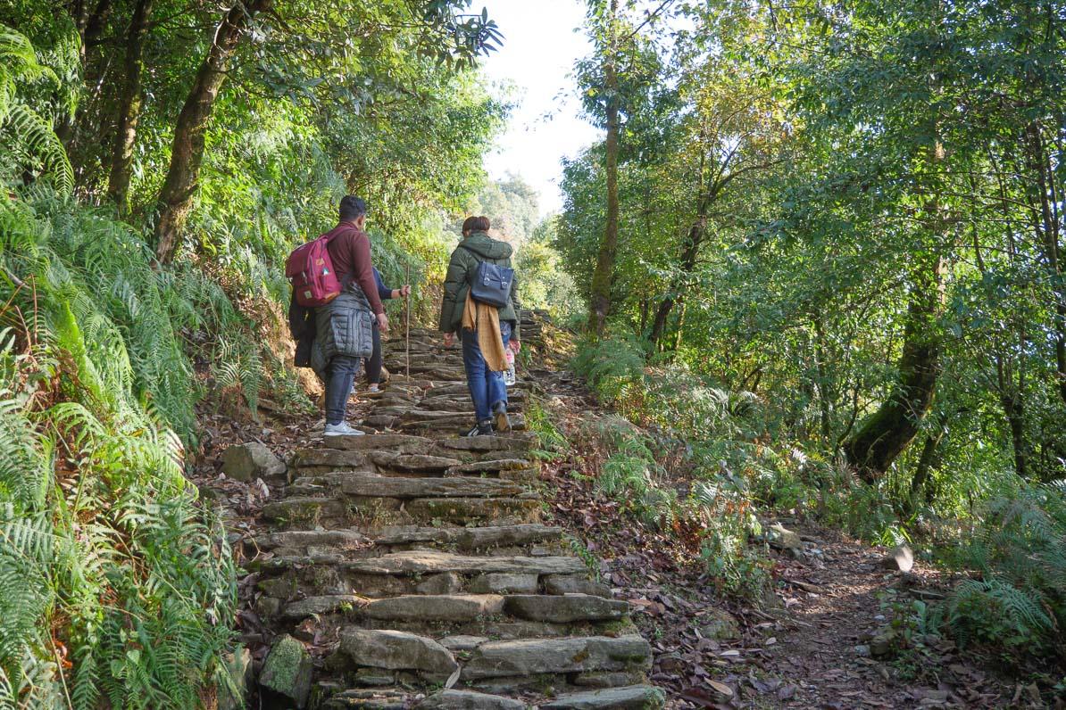 カーレからオーストラリアンキャンプへ続く石段