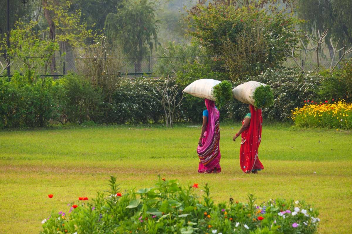 インド人の働く女性