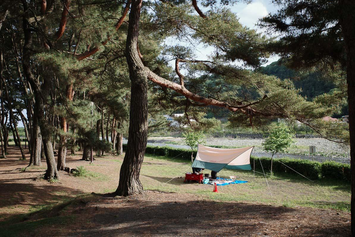 上大島キャンプ場でキャンプを張る若者