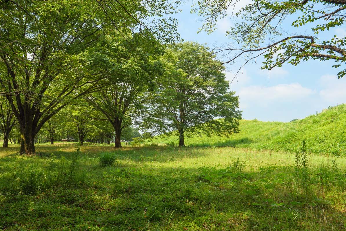 平日は訪れる人も少ない、さきたま古墳公園